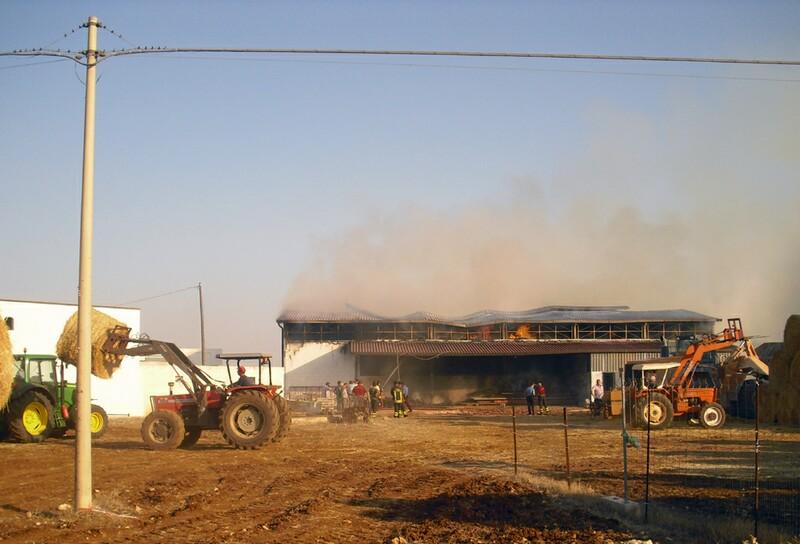 foto2c_25.8.2011-gioia_del_colle_incendio_azienda_agricola_8