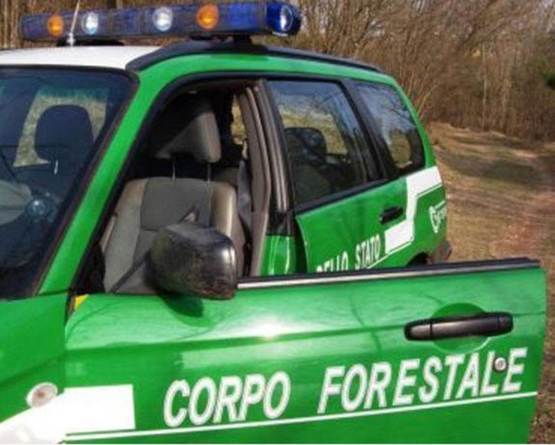 corpo-forestale2