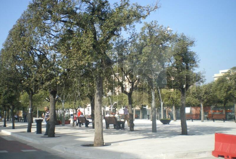 piazza_9_12