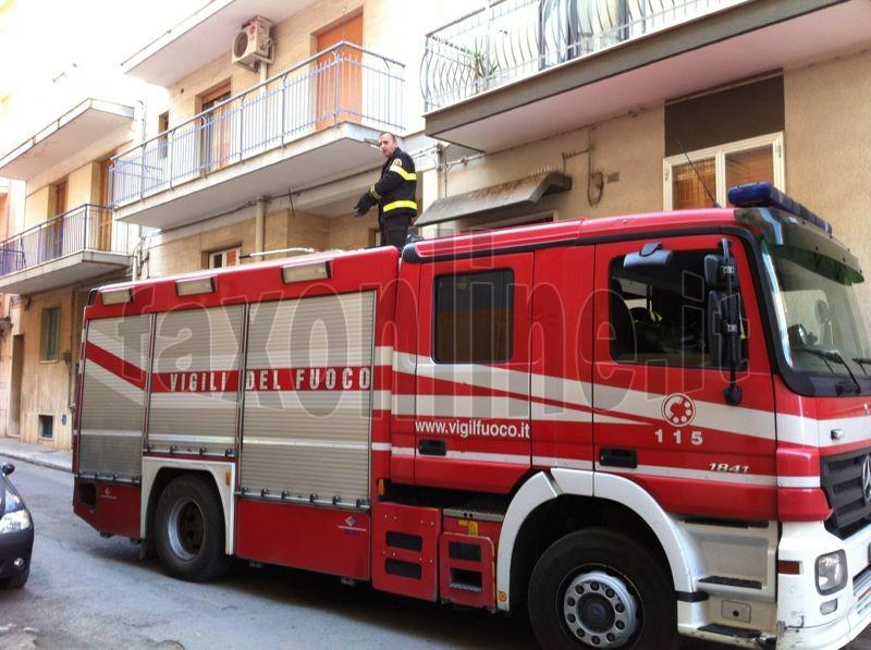 Vigili_del_fuoco_per_colombi