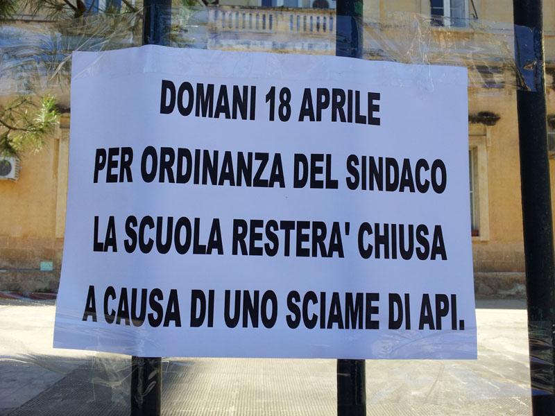 asilo_chiuso_per_sciame_api