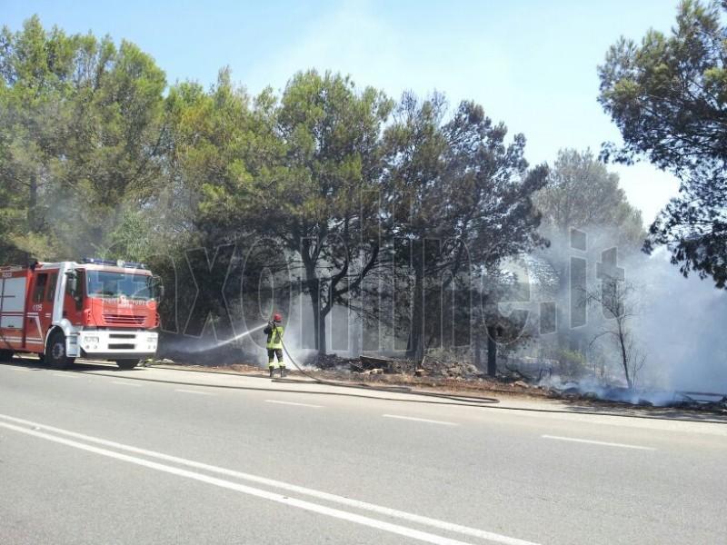 incendio Monte Laureto