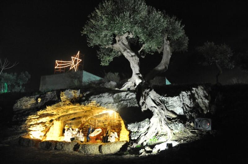 Grotta Albero
