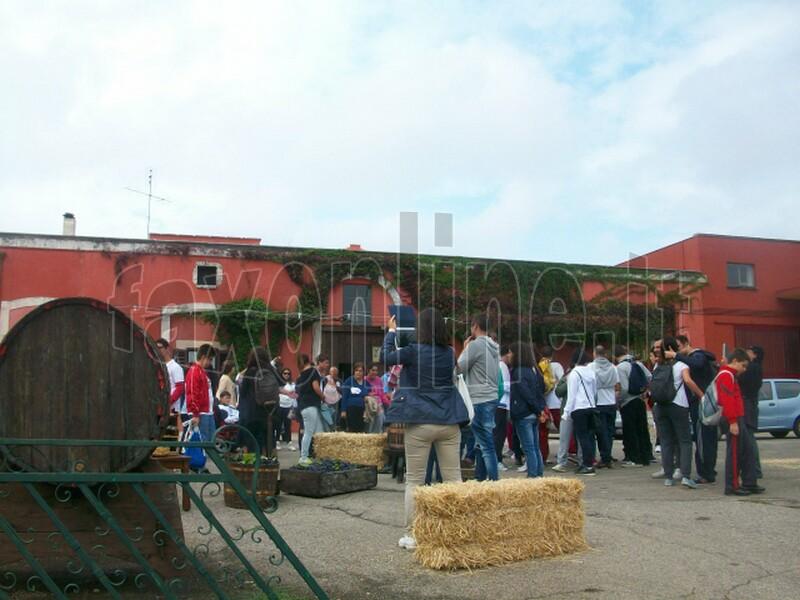 festa uva-putignano3
