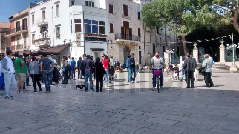 manifestazione canina CONV