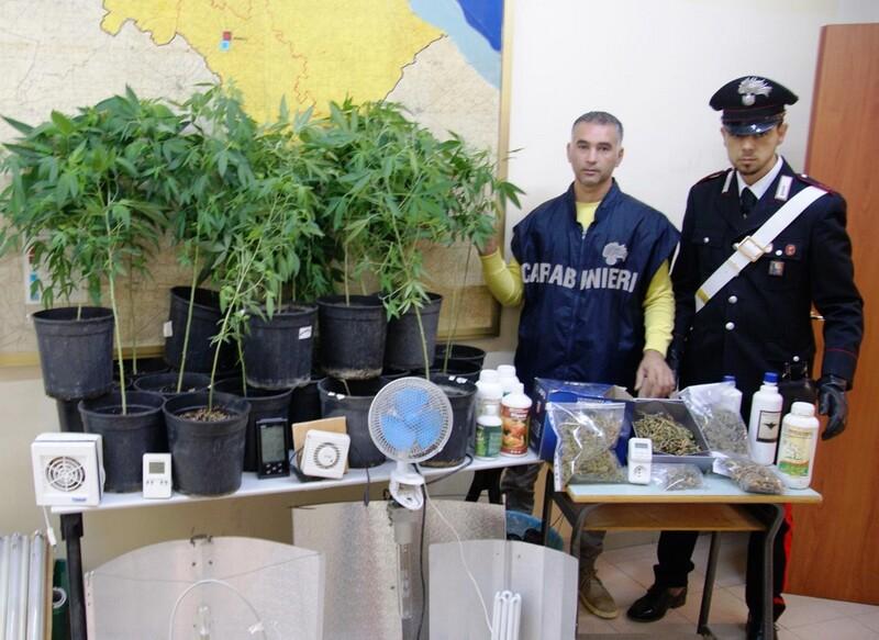 coltivava marijuana nella sua abitazione-14.10