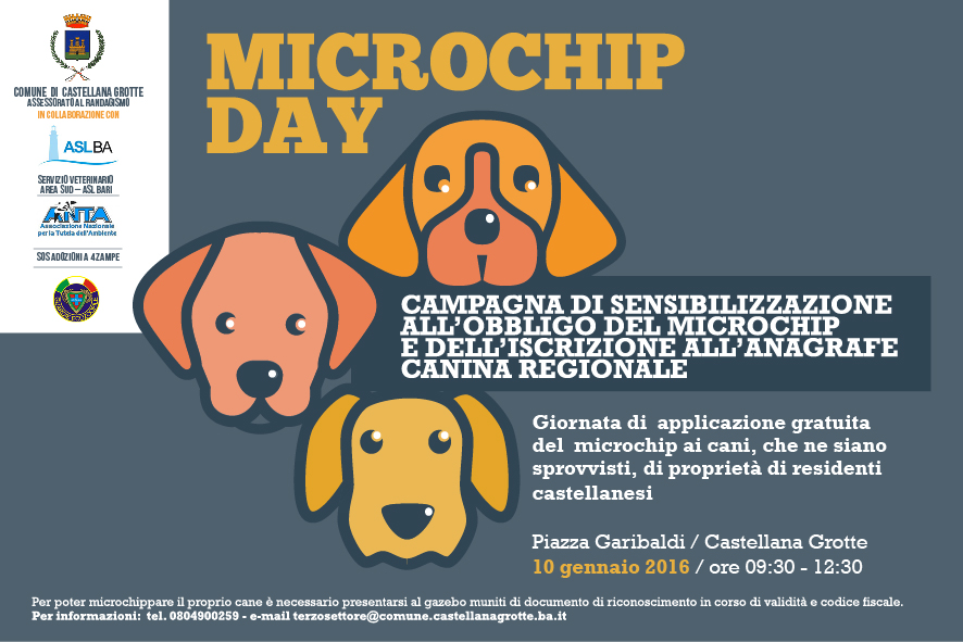 cartolina-microchip-day
