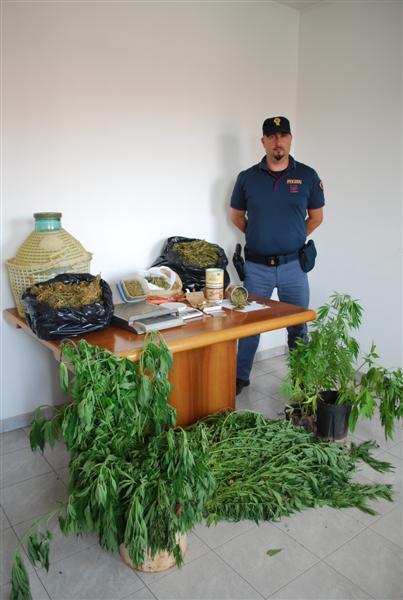 coltivazione2