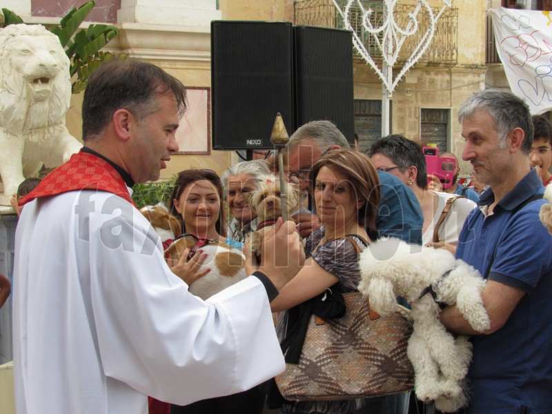 wt-Don Gaetano benedice