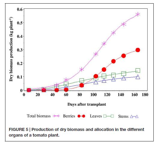 Biomassa copia