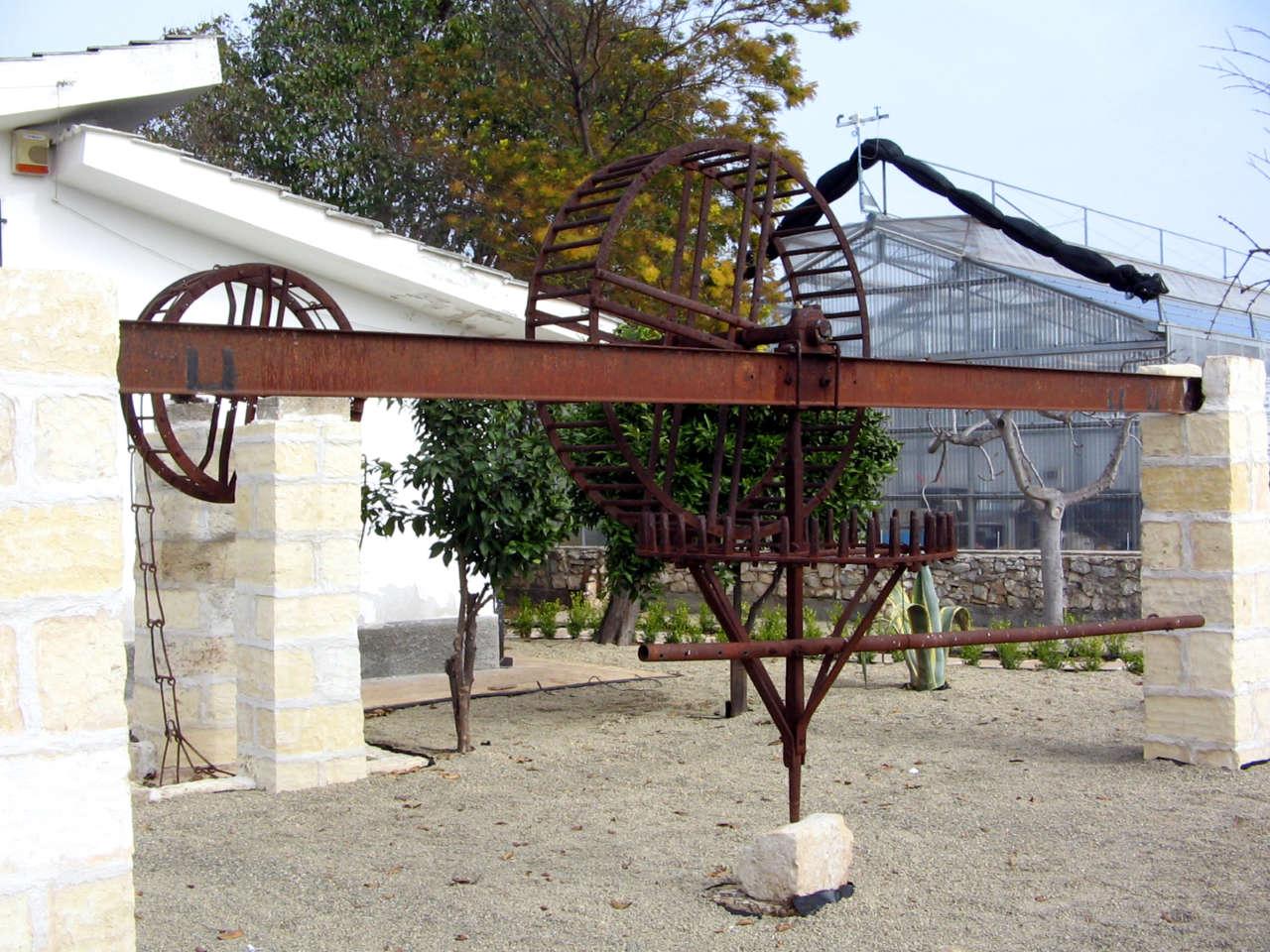foto Azienda La Noria con sfondo serra