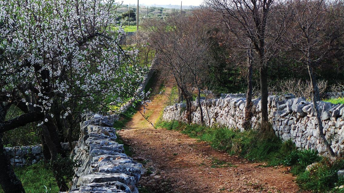 trail masseria torricella