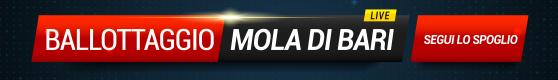 Banner-Mola2
